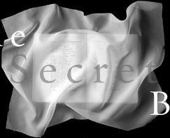 one_secretsm