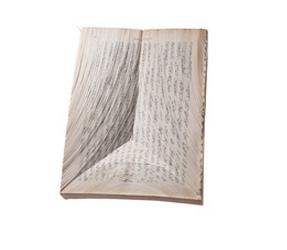 Oratorical Type by Nerhol (Ryuta Iida and Yoshihisa Tanaka)