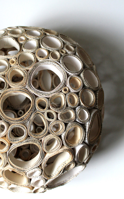 Fungal Spores © Julie K. Dodd