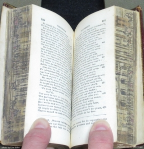 Double-fore-edge-painting-showing-half-of-each-painting