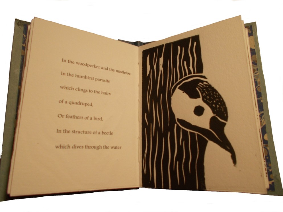 Artist: Angela Thames Darwin's Poetic Words Hardbound, 12 pages, 12 x 8 cm, 8 linocuts, Somerset paper