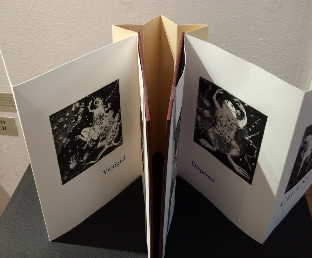 Diane Stemper Universal Sample (2014) Edition of 4, Intaglio and letterpress on Arches